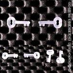 SH Mini Silicon Key 12.7 x 2.54mm (1/2 x 0.100inch)