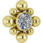 Gold PVD Titan Cluster Internal Micro #12 Aufsatz gesetzt...