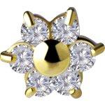 Internal 18K Gold Blumen Aufsatz 5 mm mit 6 x1.5 mm...