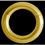Hinged Gold Titan Ring (Segment Optik) - handpoliert