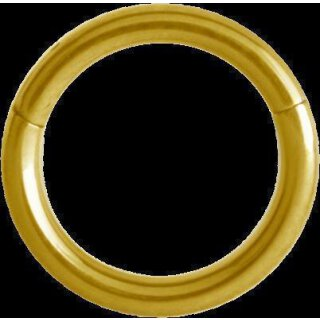 Hinged Gold Titan Ring 1.0x07mm (Segment Optik) - handpoliert
