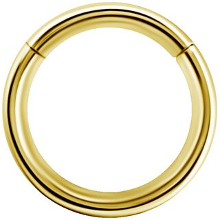 Hinged Ring 18K Gold Clicker (Segment Optik)