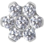 Titan Jew. Disc Mini Flower 0.8 mm für 1.2 mm Internal...