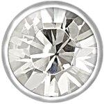 Titan Jew. Flat Clip Disc